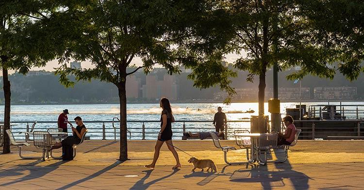 background_neighborhood_mobile.jpg